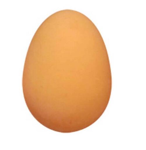 Practical joke æg