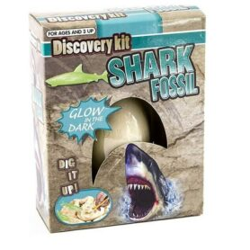shark-fossil-egg