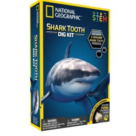 national-geographic-shark-teeth-dig-kit
